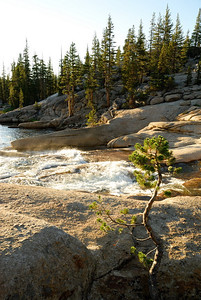 Accent - July - Rapids in the Tuolumne River Yosemite National Park