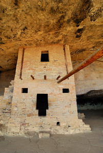 Background - November - Protruding Timbers Mesa Verde National Park