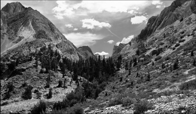 August Accent - Convict Creek Canyon Eastern Sierra Nevada