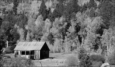 October Accent - Hope Valley Cabin Hope Valley