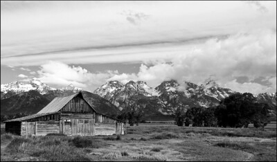 July Accent - Mormon Row Grand Teton National Park