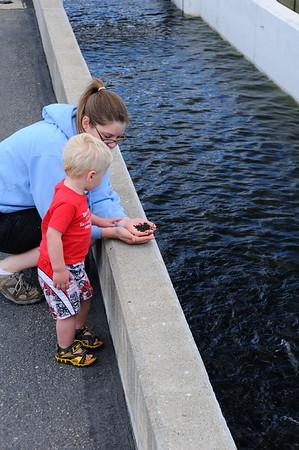 Feeding Fish at the Sawtooth Fish Hatchery