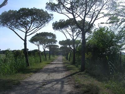 Maremma Maggio 2007