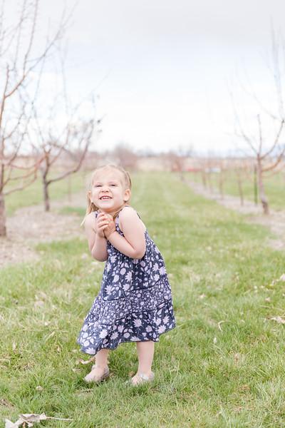 Apple Orchard-18