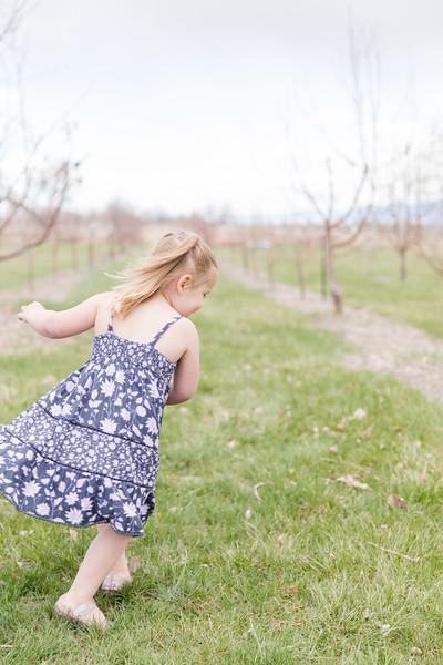 Apple Orchard-17