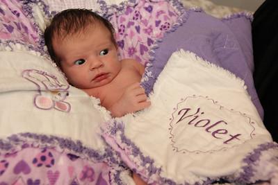 Violet 2 weeks 266