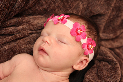 Violet 2 weeks 226