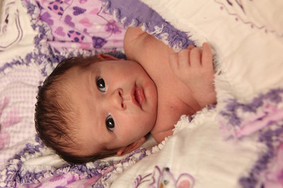Violet 2 weeks 270