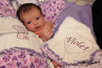 Violet 2 weeks 264