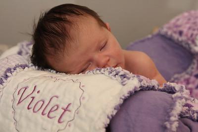 Violet 2 weeks 243
