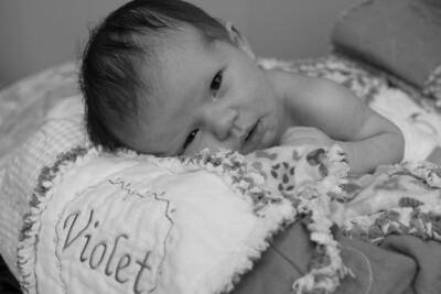 Violet 2 weeks 246f