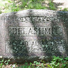 The next 37 pictures are from the Newburg cemetery. It is chock full of Evans, Delashmits, and Colvins. This is Alfred Alexander Delashmit who was Sarah Emma Delashmit's father. Sarah Emma married Harry Colvin. They are Evalena Evans parents and thus my maternal great grandparents.