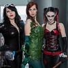 Catwoman, Poison Ivy, and Harley Quinn