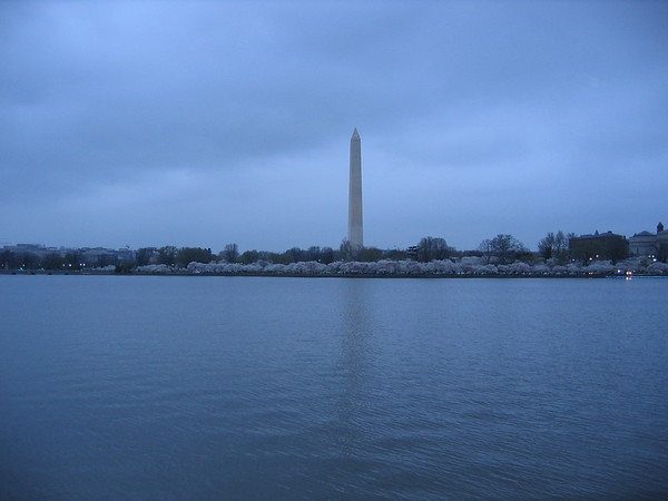 Tidal Basin near the Jefferson Memorial
