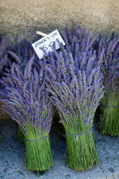 Provence 4296