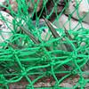 Rygfinner fra havbars.