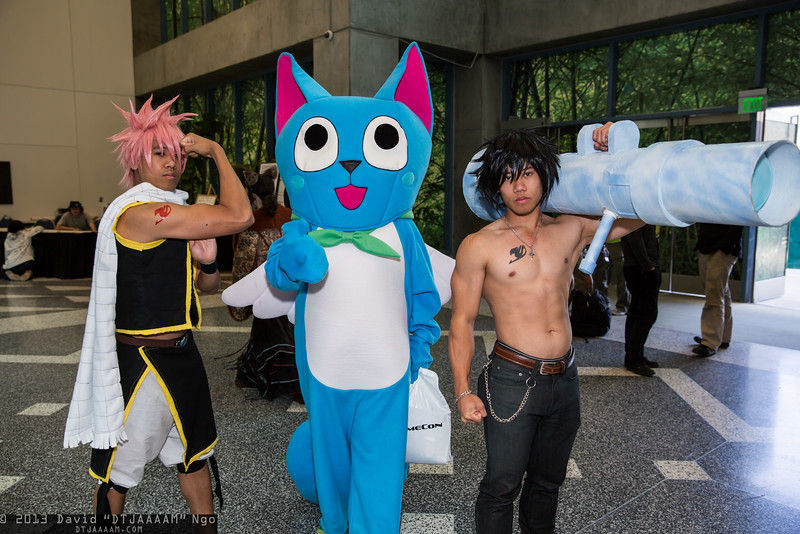 Natsu Dragneel, Happy, and Gray Fullbuster