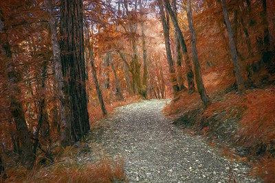Colorful Rocky Path