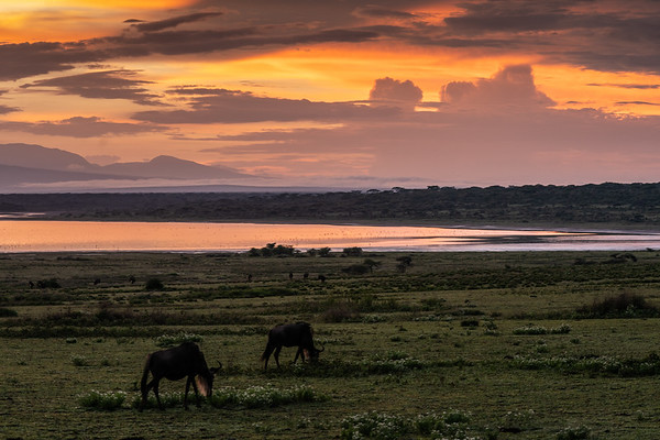 Sunrise in Ndutu