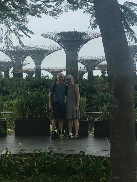 Sheldon & Mitzi Gardens by the Bay Supertree Grove