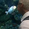 Sheldon admiring the fish