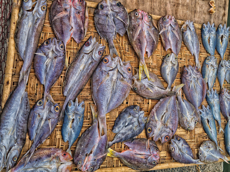Dried fish 2