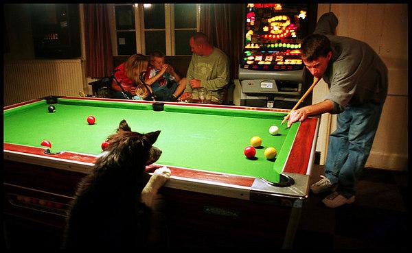 Staghunters Inn; Exmoor, England