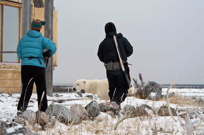 Guarding-the-lodge-from-polar-bears, Seal River Lodge, Manitoba