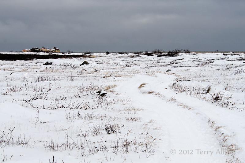 Track-to-Seal-River-Lodge, Manitoba