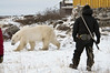 Polar-bear-&-guide-2