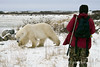 Polar-bear-&-guide-1