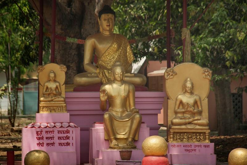 Thai Buddhist Vihara . Sarnath
