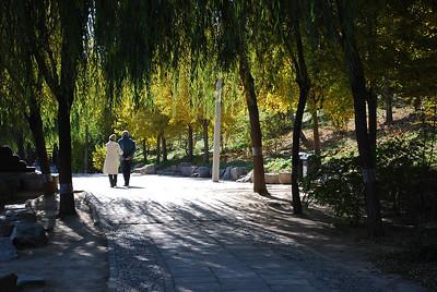 beijing, 2008 Oct. Yuan Ming Yuan