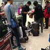 bj 机场,一只小beagle 尽职的闻出一代牛肉,之后吃到主人给的奖励小点心