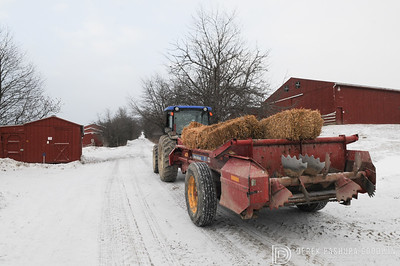 20140316-Farm_Sanctuary_Snow-4635