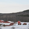 20140314-Farm_Sanctuary_Snow-8263