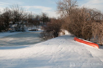 20140314-Farm_Sanctuary_Snow-4289