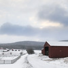20140316-Farm_Sanctuary_Snow-4637