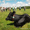 20130803_Farm_Sanctuary_Hoe_Down_7879