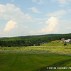 20140802-Farm_Sanctuary_Hoe_Down-7807