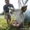 20140802-Farm_Sanctuary_Hoe_Down-8220