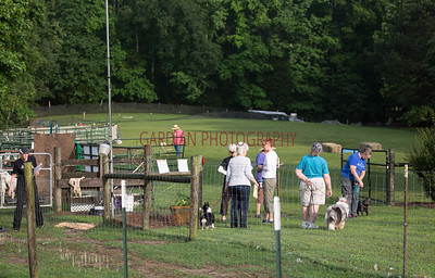 Farm Dog Certification  6.2.18