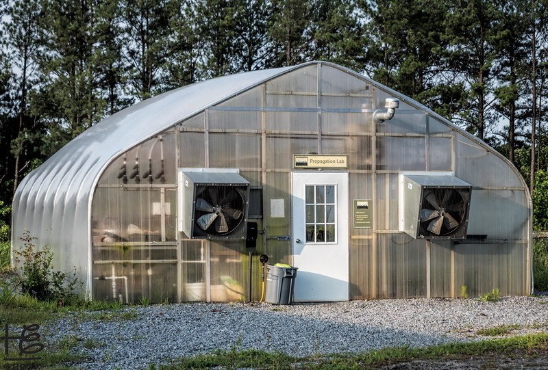 Hickory Grove Farm - Propagation Lab