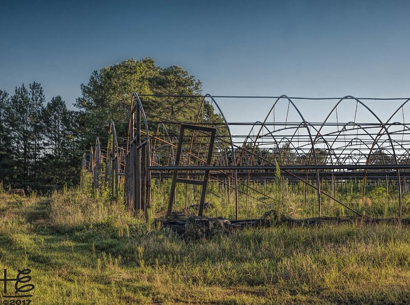 King of Crops - open hoops