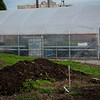 Greenhouse @ Good Samaritan