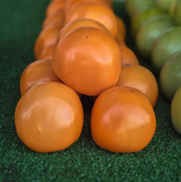 Golen tomatoes