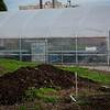 Greenhouse @ Good Samaritan
