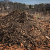Food waste compost windrow