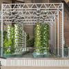Hyrdroponics garden