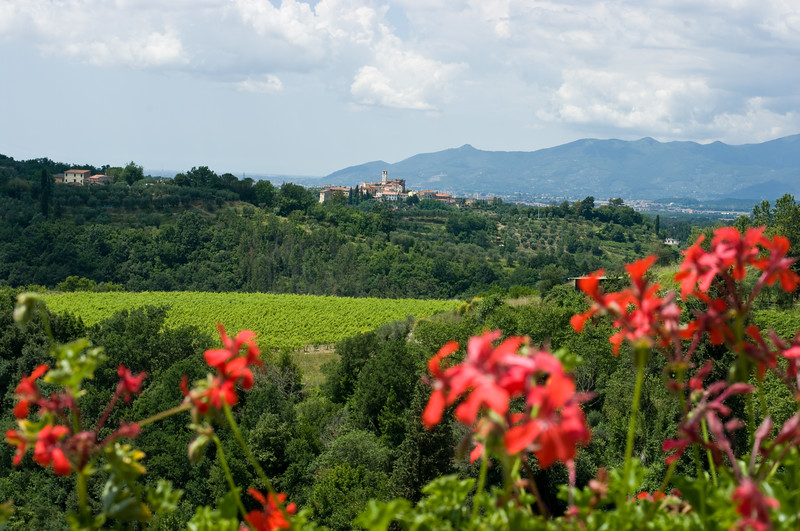 View from a balcony at the Sangervasio Winery and castle in Tuscany.